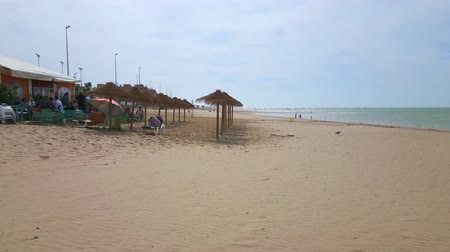 zeedieren : SANLUCAR, SPAIN - SEPTEMBER 22, 2019: Panorama of Calzada beach with sunshades, riverside cafes and the gentle waters of Guadalquivir river, on September 22 in Sanlucar Stockvideo