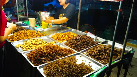 siamês : AO NANG, THAILAND - APRIL 27, 2019: The fried insects attract the tourists to the stall of Ao Nang Night Market, on April 27 in Ao Nang