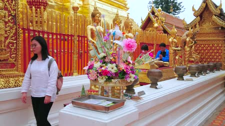 buquê : CHIANG MAI, THAILAND - MAY 7, 2019: Pilgrims perform the Buddhist ritual, praying and walking with aroma sticks around golden chedi of Wat Phra That Doi Suthep temple, on May 7 in Chiang Mai Vídeos