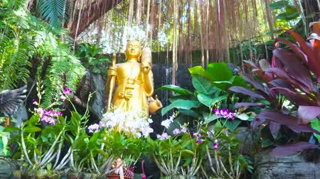 orchideeen : The lush garden of Golden Mount (Wat Saket) Temple with waterfall, aerial roots of banyan tree, bromeliads, orchids and golden Buddhist statue, Bangkok, Thailand