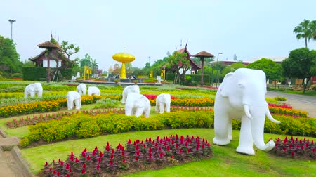 kertészet : CHIANG MAI, THAILAND - MAY 7, 2019: The sculptures of white elephants, running among the flower beds of Royal Rajapruek Park with a view on golden tree on background, on May 7 in Chiang Mai