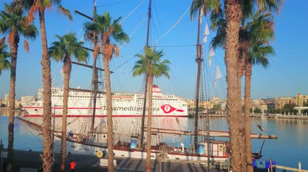 waterkant : MALAGA, SPAIN - SEPTEMBER 29, 2019: The modern cruise liner is moored behind the palm trees and vintage sailing yacht in Malaga port, on September 29 in Malag Stockvideo