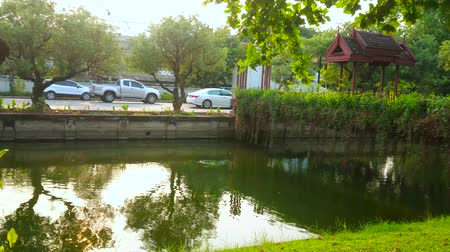 Walk along the medieval moat, lined with lush green park and neighboring with fortress wall, surrounding old town of Chiang Mai, Thailand Stock Footage
