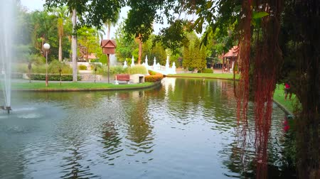 Aerial roots of banyan tree, green lawns and lush tropic greenery around the fountain in Buak Hard public park, Chiang Mai, Thailand