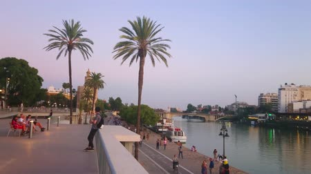 crepúsculo : SEVILLE, SPAIN - SEPTEMBER 29, 2019: The evening in riverside park with tall palm trees and medieval Torre del Oro (Golden Tower) on background, on September 29 in Seville Stock Footage