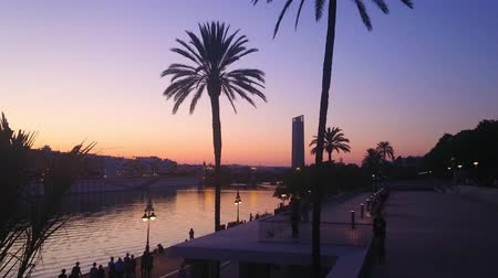 crepúsculo : SEVILLE, SPAIN - SEPTEMBER 29, 2019: The sunset silhouette of palm trees and Sevilla skyscraper from embankment of Guadalquivir river, reflecting twilight sky, on September 29 in Seville