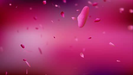 Falling pink rose petals on pink background. Shallow depth of field. Slow motion.