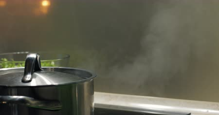 cooktop : Closed pot with boiling water on electric cooktop in the kitchen. Pair rises up.