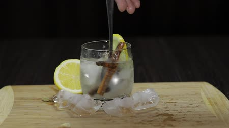 tonikum : Mix with a spoon lemon cocktail. Refreshing alcoholic cocktail drink.