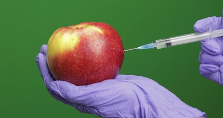 lényeg : Female scientist holding syringe with medicines in one hand and an apple in other hand. Makes a injection with a medicine syringe in apple. Close-up. Concept of genetic engineering. Chroma key