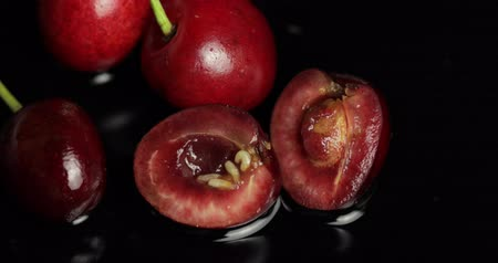 worms : Fruit worms in rotten cherry, black background. Larva of cherry flies. Extreme closeup