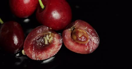 güve : Fruit worms in rotten cherry, black background. Larva of cherry flies. Extreme closeup