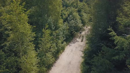 motorcross : Extreme three motorcyclists rides on road in the forest. Motocross. Motosport. Stock footage of motorcycle. Aerial view Stockvideo