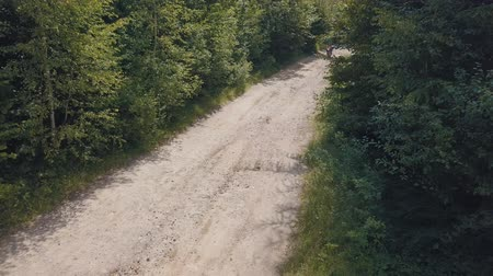 motorcross : Extreme motorcyclist rides on road in the forest. Motocross. Motosport. Freedom. Stock footage of motorcycle. Aerial view