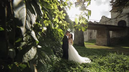 Lovely young caucasian bride and groom in the park near wall with many leafs. Wedding couple. Happy family. Newlyweds in sunbeams. Man and woman in love. Slow motion 動画素材