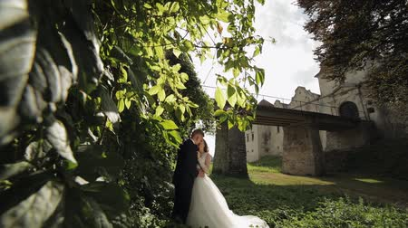 Lovely young caucasian bride and groom in the park near wall with many leafs. Wedding couple. Happy family. Newlyweds in sunbeams. Man and woman in love. Slow motion 影像素材
