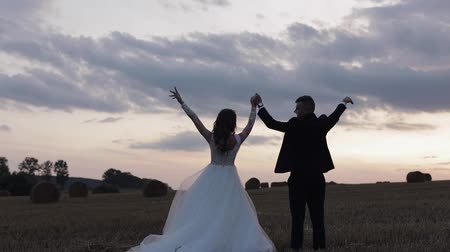 veli : Lovely young caucasian bride and groom on the field. Silhouettes. Sunset. Wedding couple. Happy family. Newlyweds. Man and woman in love. Slow motion Filmati Stock