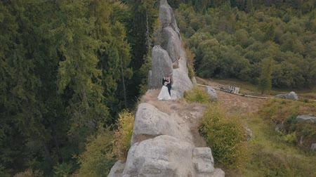 новобрачный : Wedding couple stand on a high slope of the mountain hills near forest. Lovely groom and bride. Happy family. Man and woman in love. Wedding day. Aerial view. Shot from drone