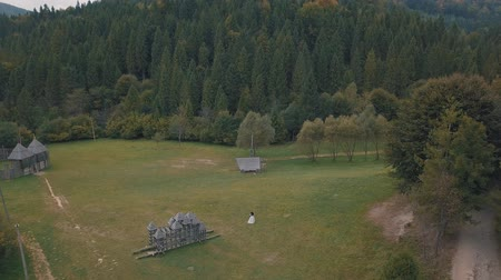 новобрачный : Newlyweds dance together on a field near the forest. Lovely groom and bride. Happy family. Man and woman in love. Wedding day. Aerial view. Shot from drone