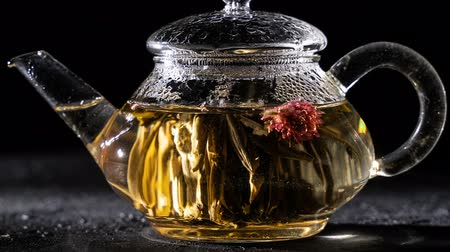 florescência : Florescence of Red Blooming Tea