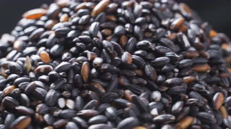 yasemin : Black Thai rice rotates. Close-up. Concept - national food, healthy food, diet, proper nutrition Stok Video