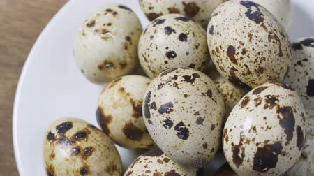 colesterol : Not boiled quail eggs. Dietary food Stock Footage