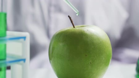 nutricional : Green apple table, scientist checking food quality, nutritional studies
