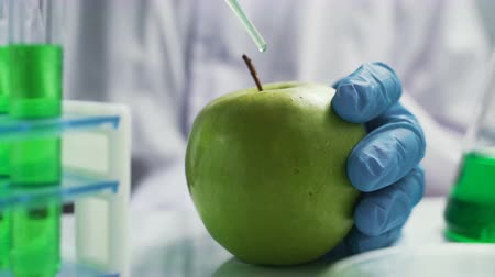 antimicrobial : Bio scientist in gloves injects green solution or substance in genetically modified green apple in the laboratory