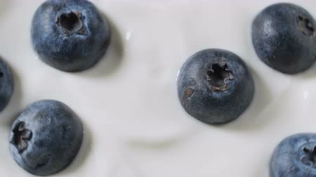 yoghurt : Blueberries in organic yogurt rotating loop video, 4k footage