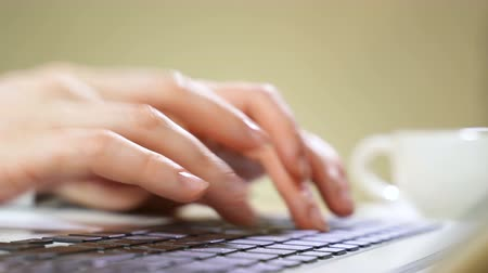 vstup : Female hands typing on a computer keyboard.