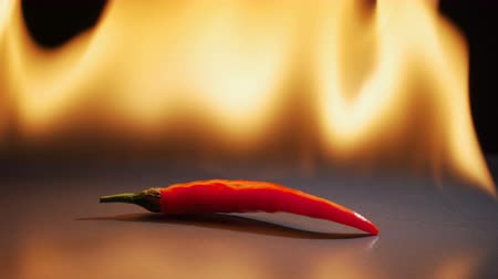 condimento : Chili pepper in flame on a black background. Vídeos