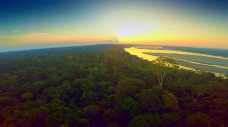 amazonka : Aerial - Rainforest - Sunset - Amazon, Ecuador