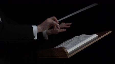 lider : Hands of a male conductor