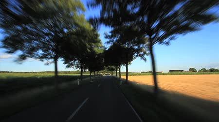 Driving on a country road