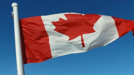 Canadian national flag Stock Footage