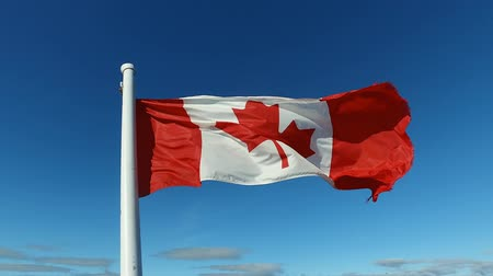 Waving flag of Canada against a blue sky.