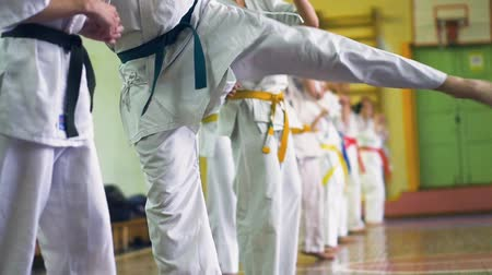 преподаватель : Russia, Novosibirsk, August 15, 2018 A group of people practicing karate strokes indoors. Endurance training in karate