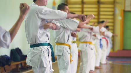 Russia, Novosibirsk, August 15, 2018 A group of people practicing karate strokes indoors. Endurance training in karate