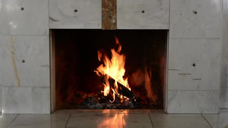 interior : Marble mantelpiece. Firewood is burning in fireplace