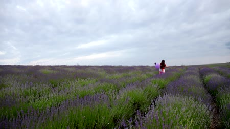 jump away : The child laughs and fun jumps. Long blond hair fluttering in the wind. Girl with purple ball runs through lavender field.