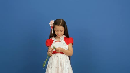 brown dress : Little girl breaks the petals of flowers on a blue background. Stock Footage