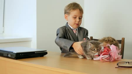 heir : Children playing with a kitten. Stock Footage