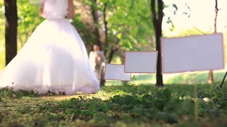 outdoor : Wedding couple in a park Stock Footage