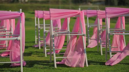 zaproszenie : On the green lawn are white chairs decorated with pink ribbons. Wideo