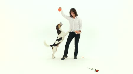 jump away : Play With A Dog On Valentines Day