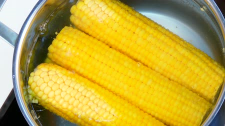 seethe : cook corn in a saucepan
