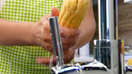 Hands wash corn under the tap