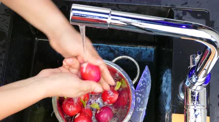 Wash the radish in the sink Stok Video