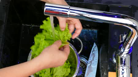 wash salad leaves under the tap Stok Video