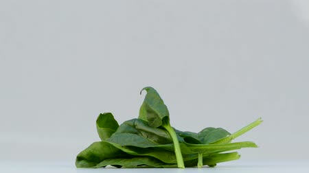 spinach spinning on a white background